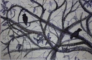 Inktober 22 '17 Crows.png